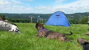 Bailey camping 2016