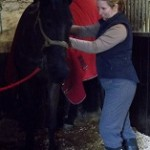 equine physiotherapy - mobilising a stiff neck
