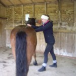treating the RDA ponies