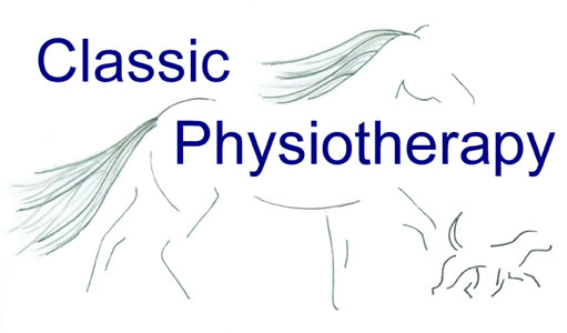 Classic Physiotherapy
